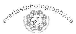 Calgary Photography Marketing