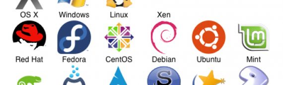Computer Operating Systems – Choices Beyond Microsoft